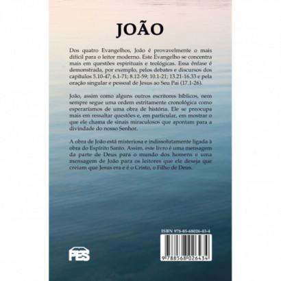 João: uma introdução